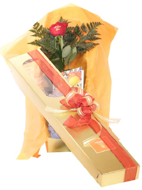 1 Rose With Box